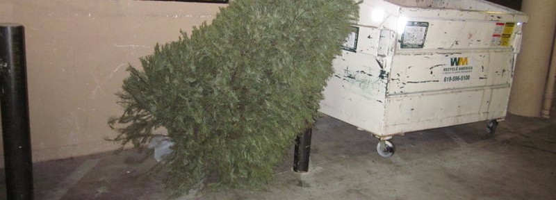 Christmas Tree and Dumpster